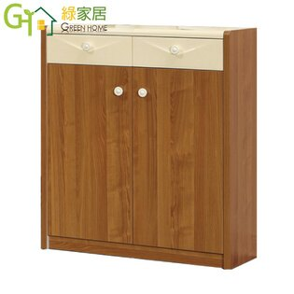 【綠家居】艾路卡時尚2.9尺二門鞋櫃收納櫃