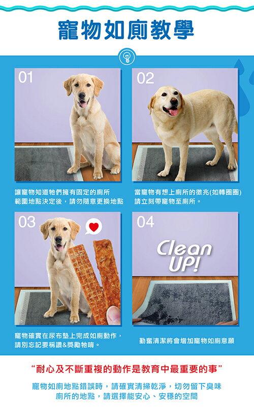 Dr. Lee 專業用活性碳尿布 寵物尿布墊  50入(45*60cm) 限3包內可超取(H003A12) 5