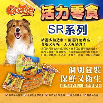 潔牙骨 活力零食 GOOTOE 古荳 迷你包 SR系列 隨手包 潔牙棒 狗零食 寵物手工零食