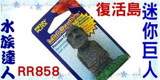 【水族達人】美國授權販售《復活島迷你巨人RR858》摩艾巨石/石像/巨像