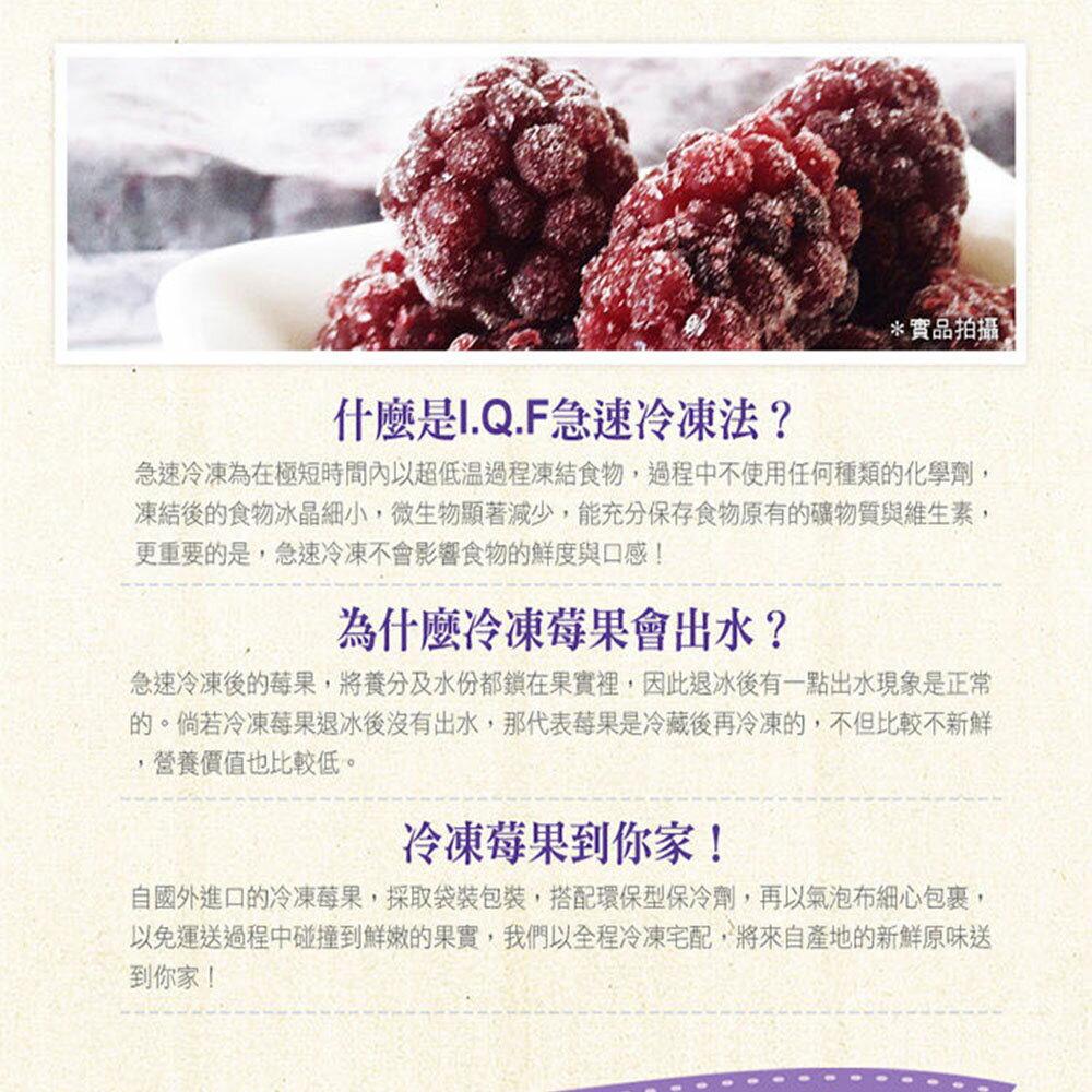 【幸美生技】免運 4公斤花青雙黑莓果特惠組(黑醋栗2公斤+黑莓2公斤) 4