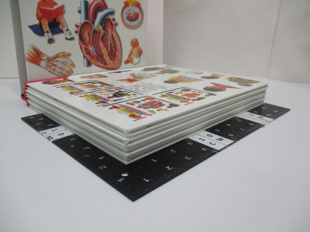 【書寶二手書T1/少年童書_EMY】人體探索系列 (一套四冊)_原價1000