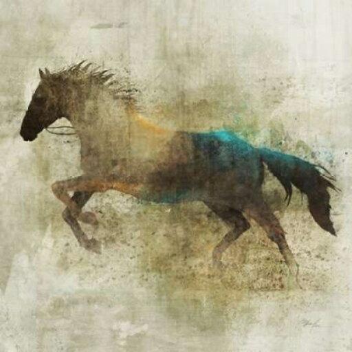 Art In Motion PDX476ROK1064LARGE Lone Star 2 Poster Print by Ken Roko, 24 x 24 - Large cd4cbb843de494ec73c225a28335d3c1