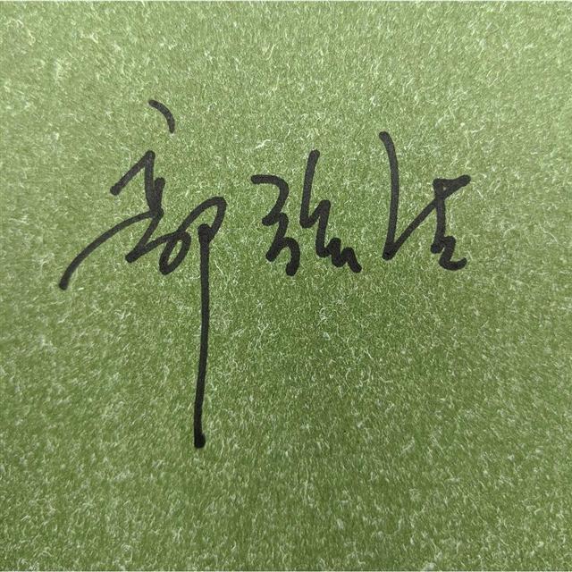 【預購】尋琴者限量典藏套組(精裝簽名版+郭強生油畫創作帆布袋) 2