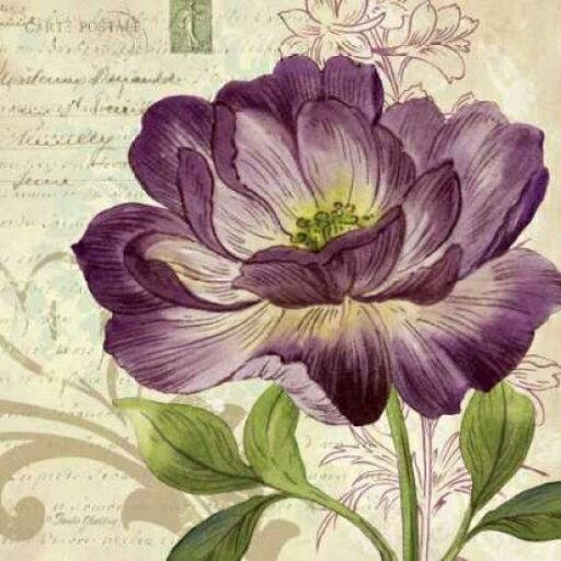 Gango Editions PDXGLA576SMALL Study in Purple II Poster Print by Pamela Gladding, 12 x 12 - Small 0248c52b598f6267cea0c2406bcd9059