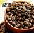 【威豆精品咖啡】馬拉威 / 日曬圓豆 / 半磅 / 咖啡豆 / 中焙@團購優惠中@ 2