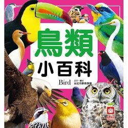 【奇買親子購物網】幼福文化 鳥類小百科(全新小百科 正方形)