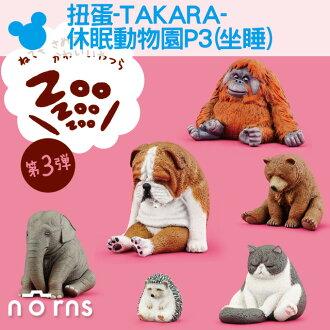NORNS 【扭蛋-TAKARA-休眠動物園P3(坐睡)】狗 貓 熊 大象 公仔 盒玩 轉蛋 隨機出貨