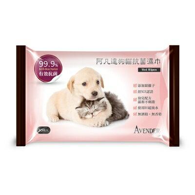 寵物 清潔 AVENDER阿凡達狗貓抗菌濕紙巾