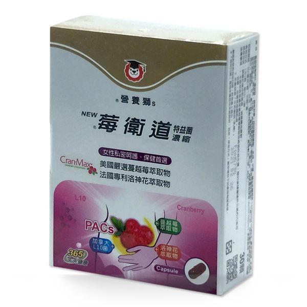 三友營養獅 莓衛道特益菌濃縮膠囊 30粒/盒◆德瑞健康家◆
