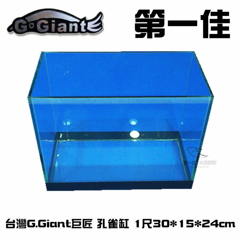 ^~第一佳 水族寵物^~ C100508 G.Giant巨匠 孔雀缸^(魚缸.空缸^) 1