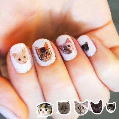 雙兒網:☆雙兒網☆【AO2280】寫真動物貓咪狗狗指甲貼熊熊小鹿可搭配指甲油-01