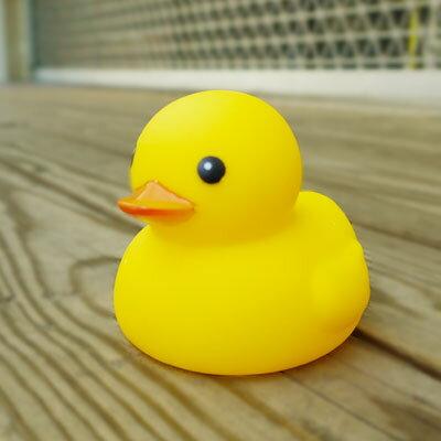 ☆雙兒網☆戲水浴室洗澡玩具【AO2337】超人氣黃小鴨/啾啾鴨/游泳鴨/母子鴨