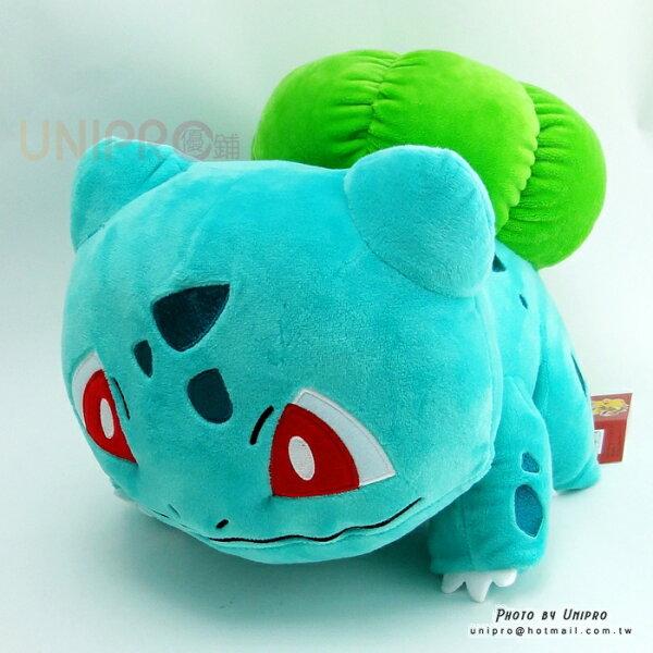 【UNIPRO】神奇寶貝XY妙蛙種子Bullbasaur30公分絨毛娃娃玩偶禮物正版授權寶可夢PokemonGo御三家