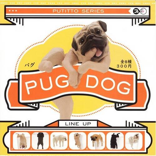 ~ ~單售 款式不重複 脫力巴哥犬 哈巴狗 PUG DOG 扭蛋 轉蛋 擺飾 奇譚 KIT