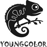 YoungColor洋卡龍