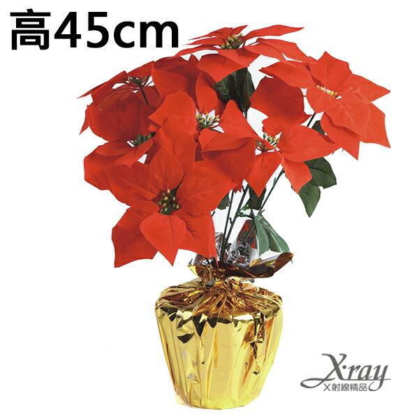 X射線【X032480】七頭聖誕盆花,聖誕紅/聖誕佈置/擺飾/造景/花材/人造花/假花