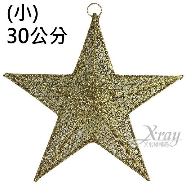 X射線【X060001】30cm半面立體星星(2入半空)金色,聖誕節/聖誕禮物/聖誕佈置/聖誕掛飾/聖誕裝飾/聖誕吊飾/聖誕襪/禮物袋