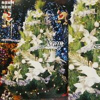 幫家裡聖誕佈置裝飾推薦聖誕樹及聖誕花圈到X射線【X030006】7呎銀針樹(不含飾品、燈飾),聖誕樹/聖誕佈置/聖誕空樹/聖誕造景/聖誕佈置裝飾推薦就在X射線 精緻禮品推薦幫家裡聖誕佈置裝飾