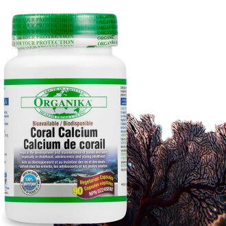 珊瑚鈣膠囊90顆-加拿大Organika(優格康)