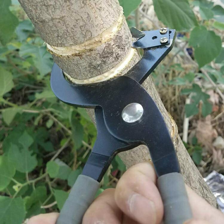 環剝刀 新型環剝鉗棗樹環剝工具 剝皮刀 開甲器割樹皮果樹  環割剪