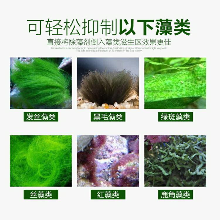 除藻劑 森森魚缸除藻劑除青苔不傷魚去苔劑除綠褐絲藻黑毛去藻綠水除苔素