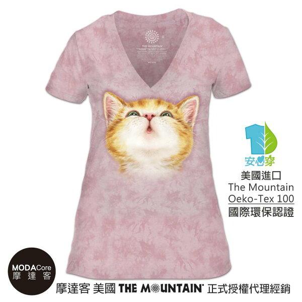 【摩達客】(預購)美國TheMountain都會系列貓咪親親V領女版短T