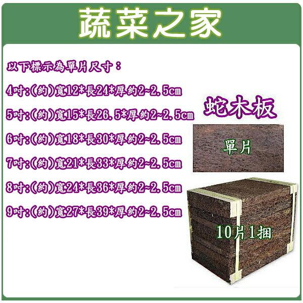 ~蔬菜之家001~AA88~4吋蛇木板單片裝