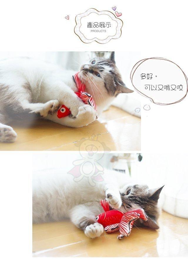 48小時出貨 寵喵樂 魚你同在一起《仿真小金魚 貓玩具》新鮮魚獲 魚魚內含貓薄荷 約15cm 3