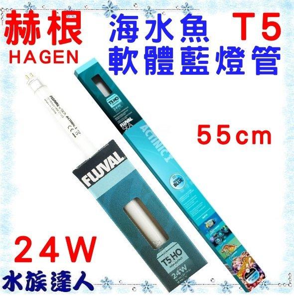 【水族達人】【燈管】赫根HAGEN富濾霸FLUVAL《T5海水魚軟體藍燈管 24W 55cm HG-A1662》