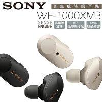 SONY WF-1000XM3 真無線藍芽耳機 公司貨 特賣 【20200209止贈矽膠保護殼x1(顏色隨機)】-3C 大碗公-3C特惠商品