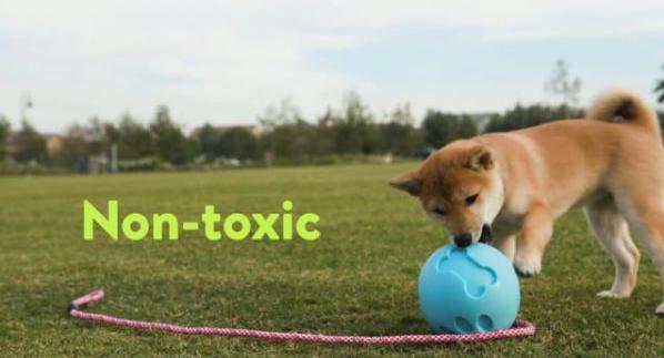 Petique 寵物零食球 | 寵物玩具、漏食球 0