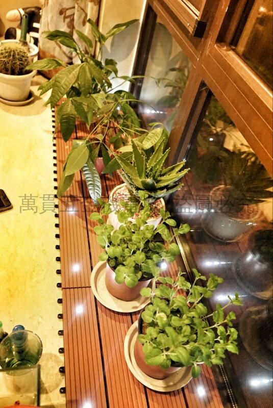 熱銷新品 【耐用20年】塑木夜光地板 戶外太陽能地板 木塑室外庭院陽臺帶燈DIY地板 LED燈