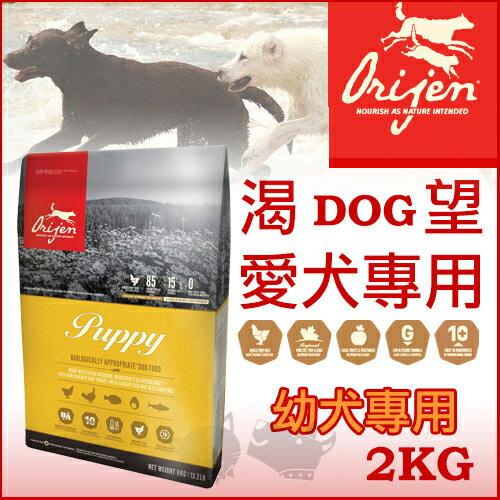 ayumi愛犬生活-寵物精品館:渴望Orijen幼犬2kg-犬飼料【免運】送雞老大
