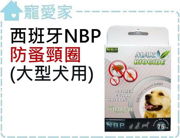 ☆寵愛家☆西班牙NBP防蚤頸圈(大型犬用)