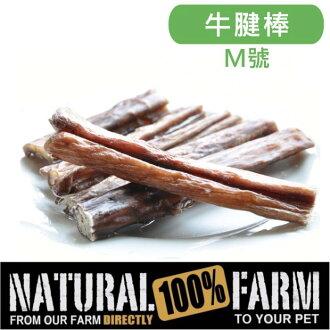 紐西蘭Natural Farm100%純天然超耐咬牛腱棒-M號 Pet\