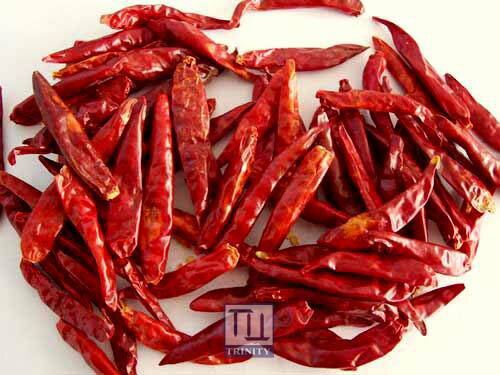 Dried Red Chilli 印度辣椒乾