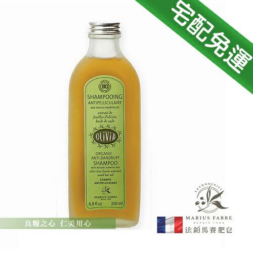 法鉑 Olivia橄欖油禮讚滋養洗髮精(230ml/瓶)_免運