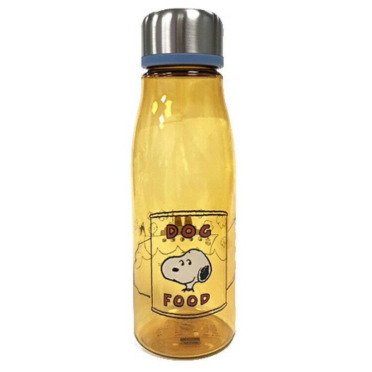 史努比 Snoopy 塑膠保冷水壺 保冷杯 隨身杯 透明瓶身 附濾茶網 500ML 日本進口正版 350504