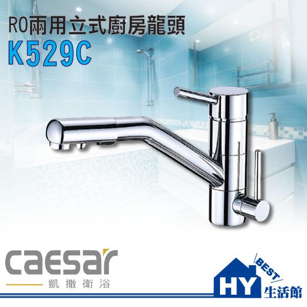 凱撒衛浴 K529C RO兩用立式廚栓 廚房水龍頭~HY 館~水電材料