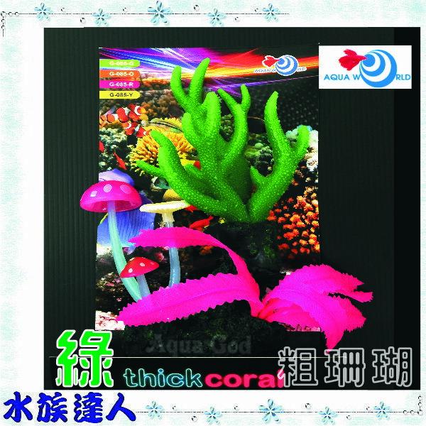 ~水族 ~~造景裝飾~水世界AQUA WORLD~sea anemone 粗珊瑚 螢光綠