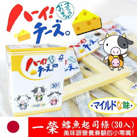 日本獨家 一榮 鱈魚起司條 (30入) 起士條 乳酪 起司 240g 進口零食【N100667】