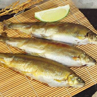 【新鮮物語】爆肥宜蘭母香魚 1kg (10尾/包)