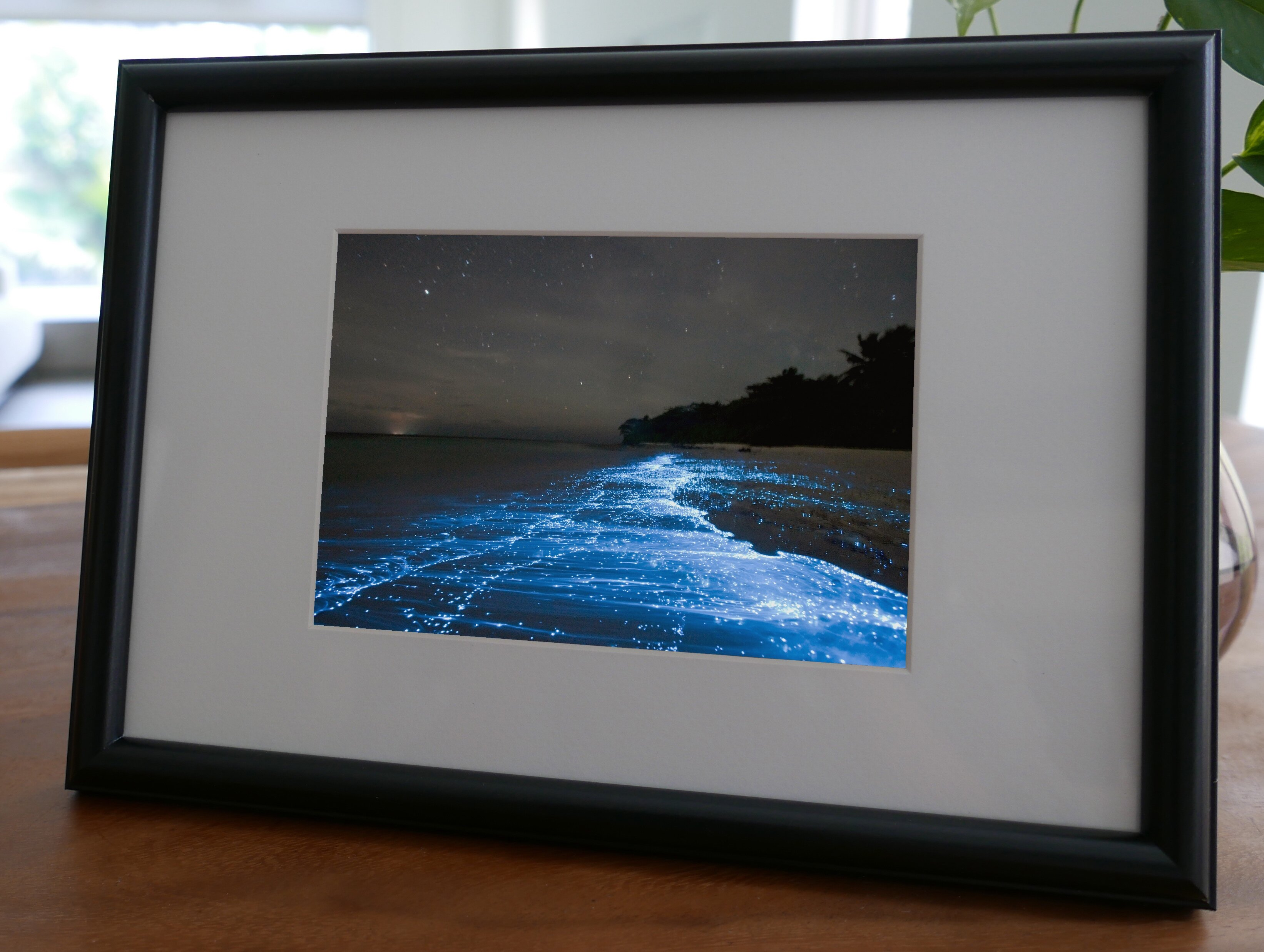 聚鯨Cetacea﹡Art【KLFZ-1687】beach海灘/color色彩/sea海洋 畫框相框
