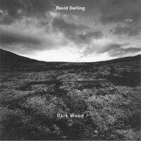 大衛.達林 David Darling: Dark Wood (CD) 【ECM】 - 限時優惠好康折扣