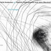 阿里爾德.安德森 Arild Andersen: The Triangle (CD) 【ECM】 - 限時優惠好康折扣