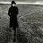 艾迪.希金斯三重奏:祕密戀情 Eddie Higgins Trio: Secret Love (CD) 【Venus】 - 限時優惠好康折扣