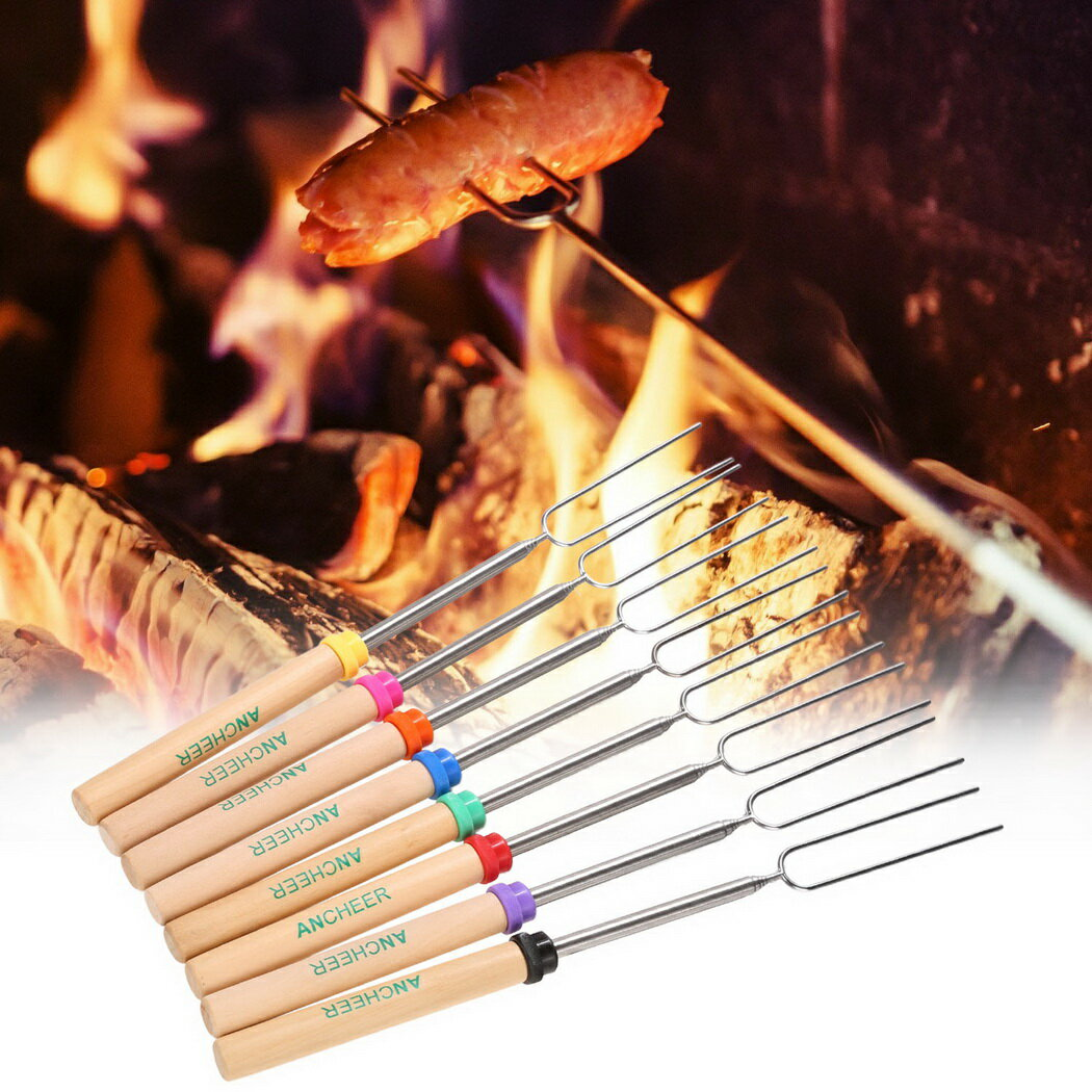 Stainless Steel Extensible Roasting Sticks Set 2
