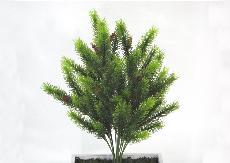 ★超低價★1.5尺圓柏(附果實)人造花空間景觀佈置造景