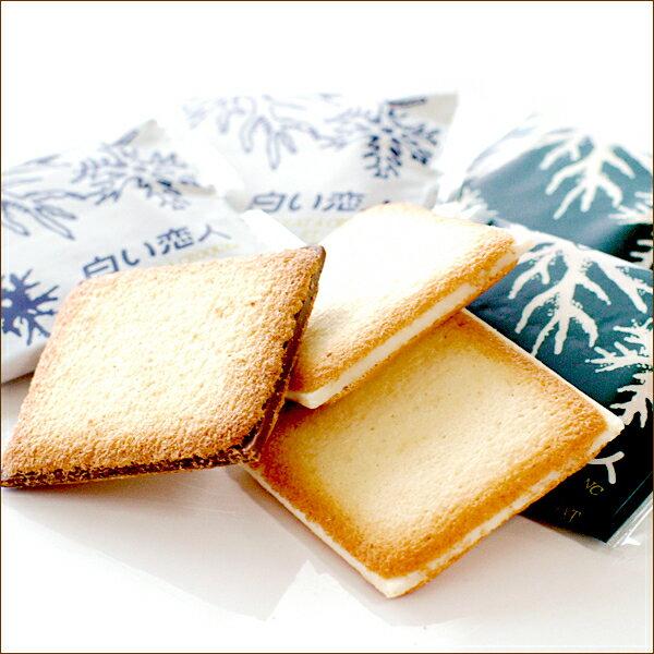 【石屋製菓】北海道白色戀人綜合巧克力夾心貓舌餅乾24枚(黑12枚+白12枚) =預購 4 / 10左右出貨= 2